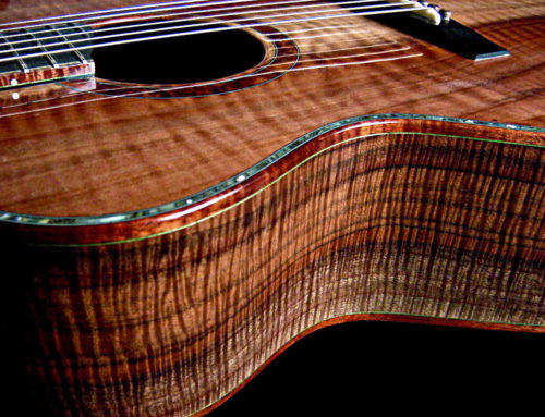 Claro Walnut Guitar