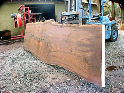 claro walnut sawmill