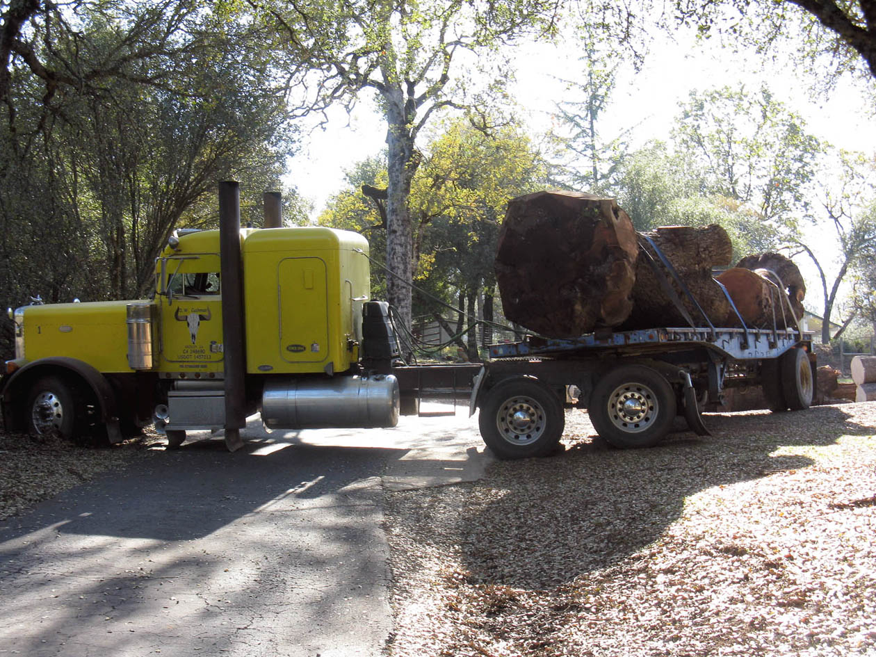Claro walnut delivery to Grass Valley mill owned by the Woodnut and his lovely Miss Marie